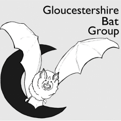 Gloucestershire Bat Group